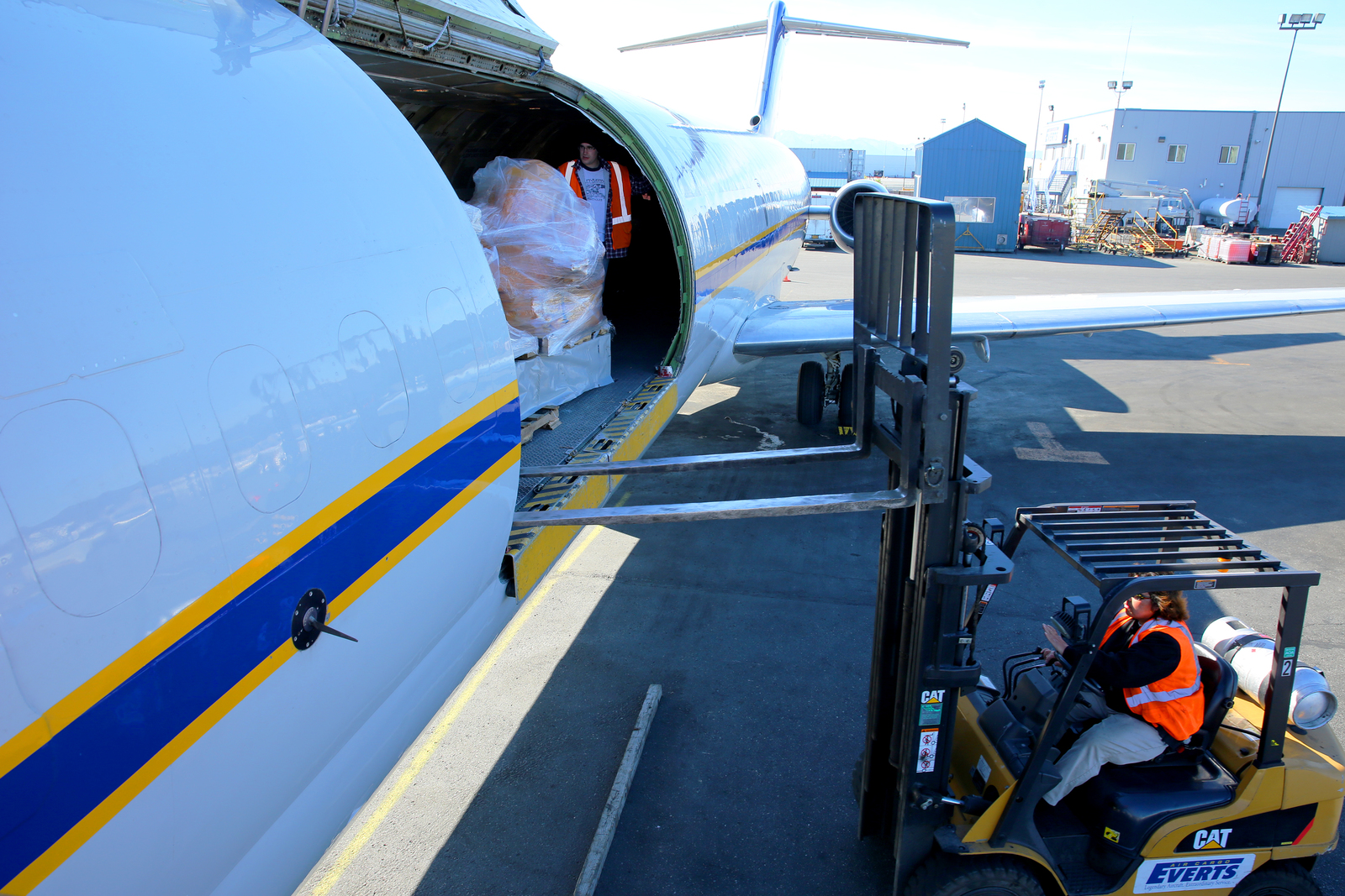 8 Gold Reasons To Choose Air Freight Services
